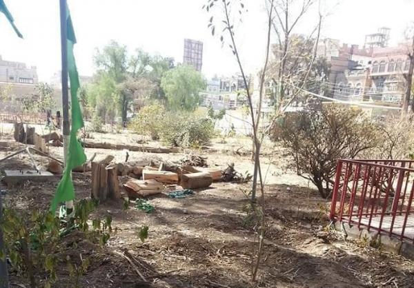 صور- أعداء البيئة الحوثيون يقطعون أشجار كلية الآداب بصنعاء ويبيعونها حطباً بعد أن زاد الطلب عليه