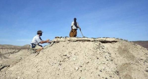 اكتشاف حفرية يعدل من تاريخ ظهور الإنسان
