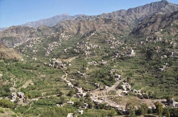 قوات اللواء 35 تنزع عشرات الألغام والعبوات الناسفة زرعتها مليشيا الحوثي بمنطقة الأقروض جنوب تعز