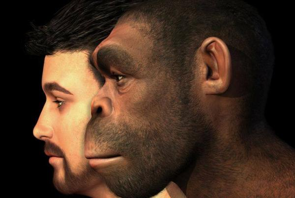 أدلة جديدة على تعايش &#34أشباه البشر&#34 مع الإنسان في أفريقيا قبل 300 ألف سنة