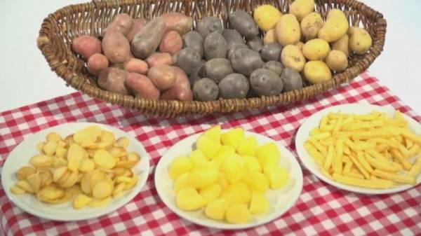خبر عاجل: تبرئة البطاطس من تهمة التسبب بالبدانة