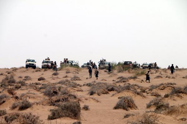 دك تحصينات دفاعية مستحدثة وتعزيزات للمليشيا تمهيداً لاستكمال تحرير الحديدة