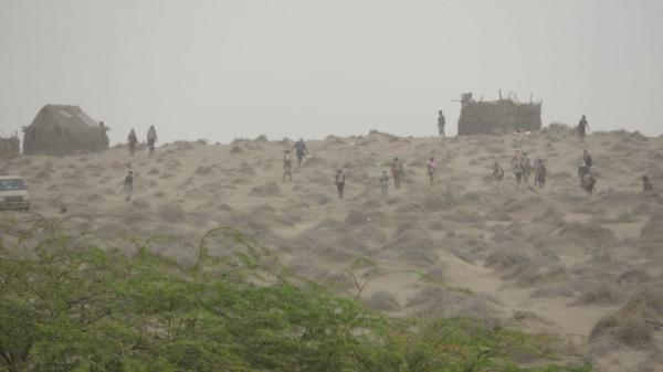 عملية التفاف مفاجئة للقوات المشتركة في أطراف الدريهمي أسفرت عن دك تحصينات المليشيا وقتل العشرات منهم