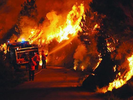 حرائق بكاليفورنيا كأنها &#34إعصار من النار&#34 وتعد الأكبر في تاريخها الحديث