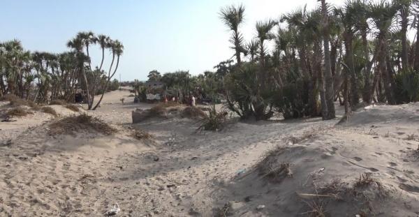 مليشيا الحوثي تواصل استهداف مواقع القوات المشتركة في التحيتا