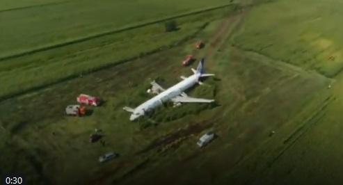 الطيور تجبر طائرة روسية على الهبوط اضطراريا في حقل للقمح وإصابة 23 شخصا (فيديو)