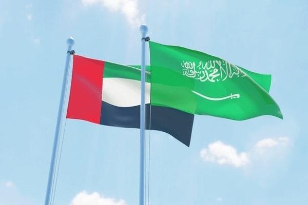 &#34البيان&#34: التحالف الإماراتي السعودي حصن منيع ضد قوى الشر