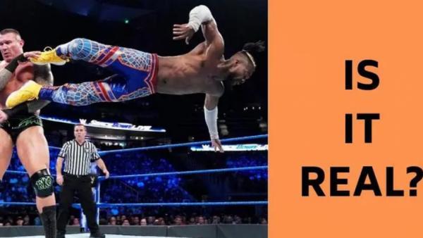 """هل مصارعة """"WWE"""" فبركة أم حقيقة؟.. موقع أمريكي يجيب"""
