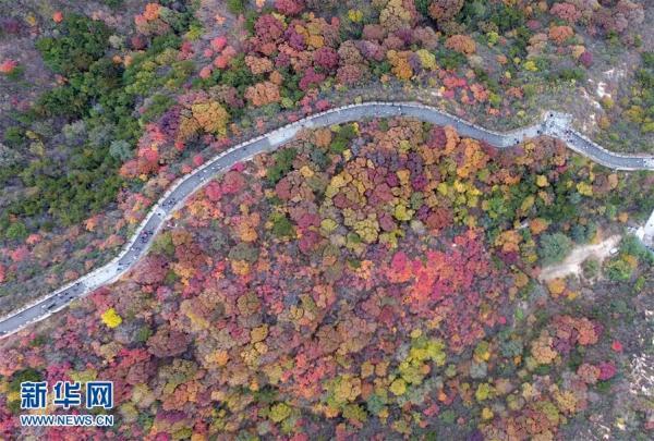 الخريف في سور الصين العظيم