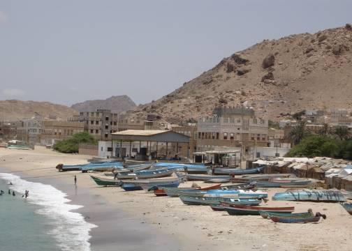 حضرموت.. ضبط 313 متسللاً صومالياً في ساحل بروم