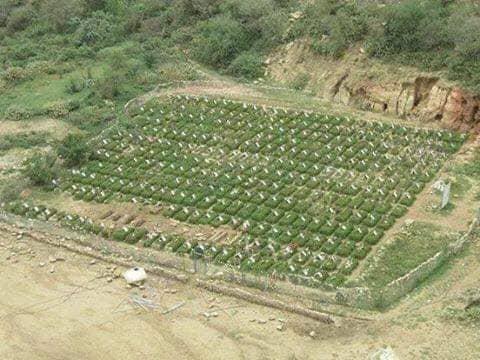 صورة لمقبرة جماعية استحدثها الحوثيون في موطن زراعة العنب بصنعاء تثير موجة تعليقات غاضبة