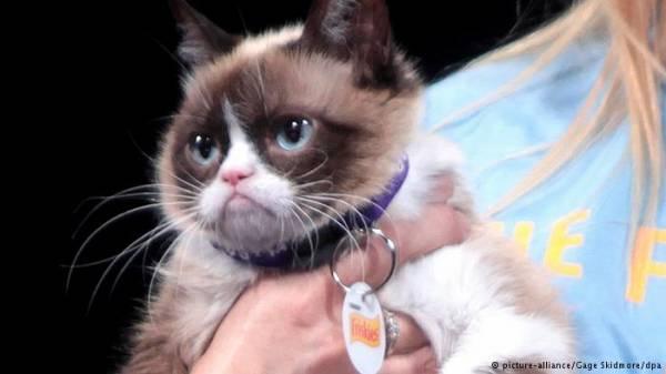 سر &#34القطة العابسة&#34 الأغنى من رونالدو!