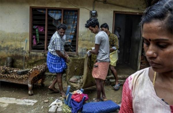الهند الأفاعي تغزو البيوت بعد انحسار الفيضان