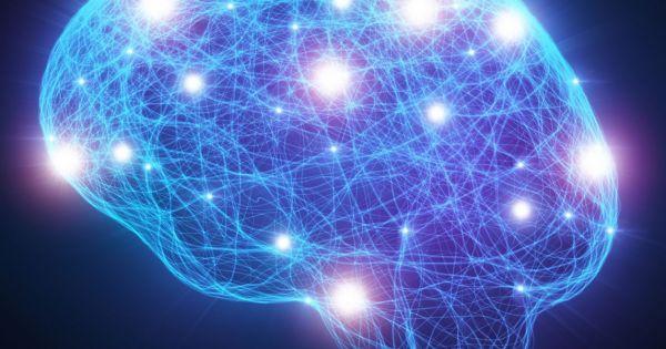 باحثون يستخدمون الواقع الافتراضي لفهم آلية الدماغ في تجميع الذكريات