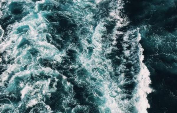 فيروسات لم يسبق رؤيتها تتمتَّع بأحماض نووية عجيبة تُكتشف حديثًا في المحيط
