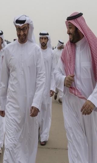 وثيقة قطرية: بن سلمان وبن زايد دعما شخصيات يمنية مرتبطة بتنظيم القاعدة