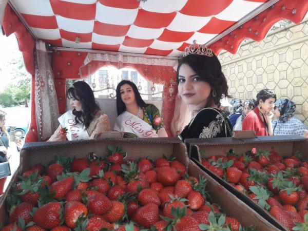 تتويج ملكة الفراولة في العرائش المغربية