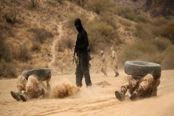 Foreign ISIS fighters arrive to Yemen Baydha: Sources