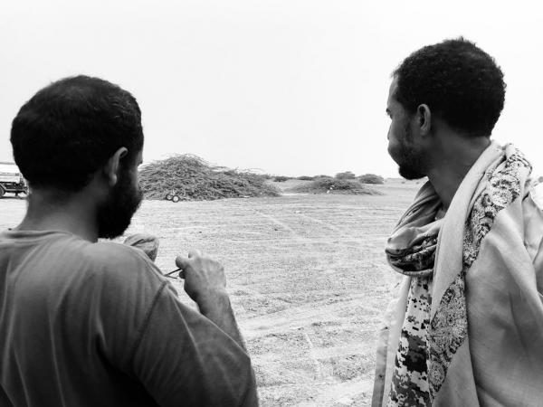 الصوفي: الساحل تحوّل إلى مقبرة كبيرة لمليشيات الحوثي