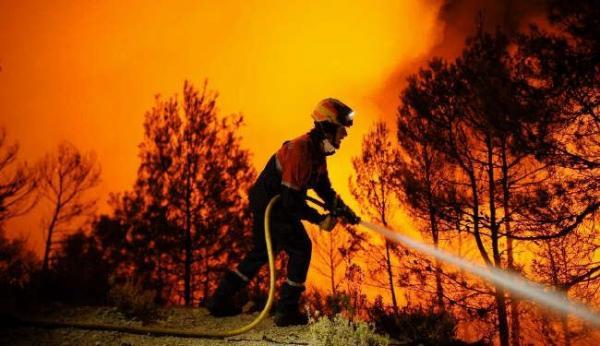 الحرائق تلتهم أكثر من ألف هكتار من غابات الجزائر