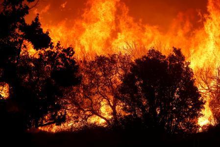 حريق غابات في كاليفورنيا يجبر السلطات على إغلاق طريق سريع