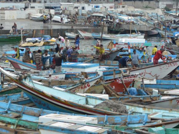 بدعم إماراتي.. افتتاح مرسى قوارب الصيادين في الخوخة بعد تأهيله من عبث الحوثيين