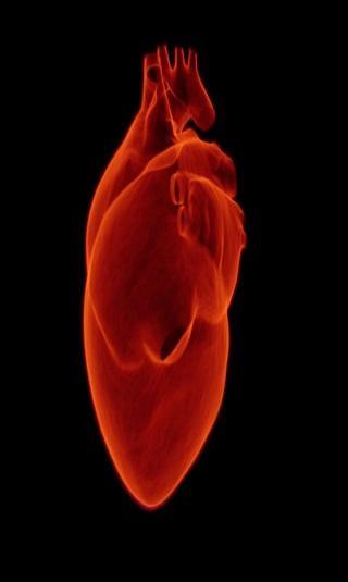 اختبار دم جديد يكشف الإصابة بالنوبات القلبية